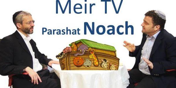 Cuidado – a inveja destrói o mundo! – Parashat Noaj
